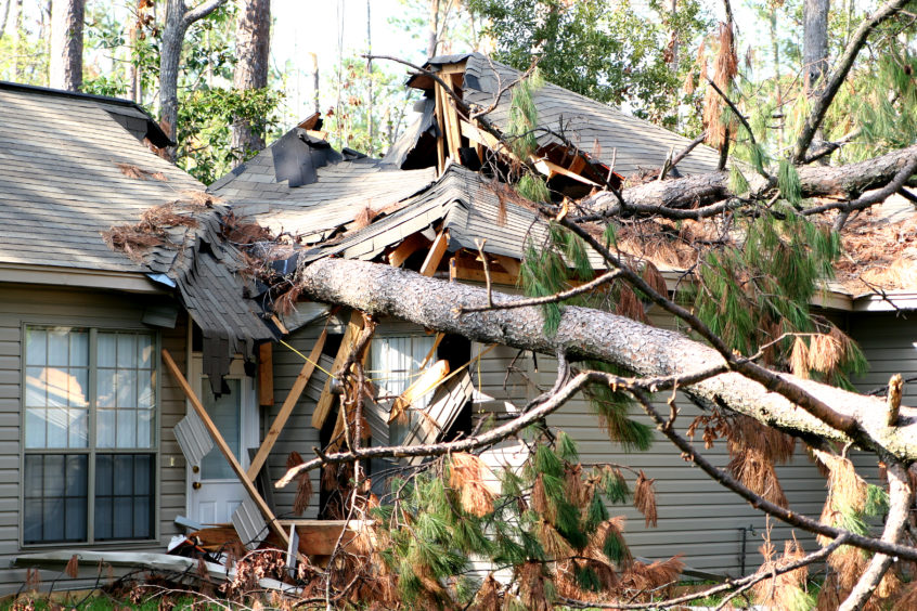 tree damage to home due to strong winds